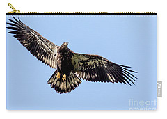 Young Bald Eagle Flight Carry-all Pouch