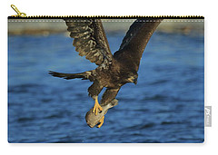 Carry-all Pouch featuring the photograph Young Bald Eagle With Fish by Coby Cooper
