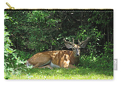 Young Buck Resting In The Shade Carry-all Pouch