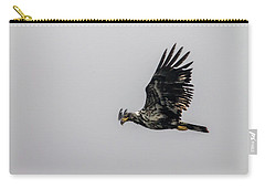 Young Eagle In Flight 07 Carry-all Pouch by Timothy Latta
