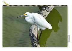 Young Egret Resting Carry-all Pouch