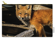 Young Fox In The Wood Carry-all Pouch