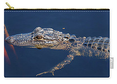 Young Gator 1 Carry-all Pouch by Arthur Dodd