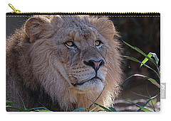 Young Lion King Carry-all Pouch