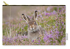 Young Mountain Hare In Purple Heather Carry-all Pouch