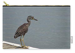 Young Night Heron Carry-all Pouch