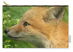 Carry-all Pouch featuring the photograph Young Red Fox In Profile by Doris Potter