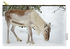 Carry-all Pouch featuring the photograph Young Rudolf by Delphimages Photo Creations