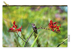 Young Rufous Hummingbird Perched On Flower Carry-all Pouch