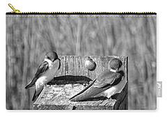 Young Tree Swallows Carry-all Pouch