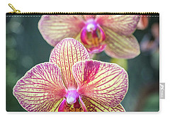 Carry-all Pouch featuring the photograph You're So Vain by Bill Pevlor