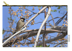 Yucca Valley House Sparrow  Carry-all Pouch by Angela J Wright