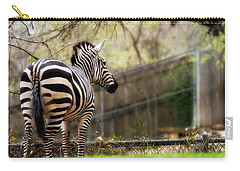 Zebra Carry-all Pouch by Lana Trussell