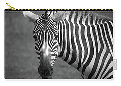 Carry-all Pouch featuring the photograph Zebra by Trace Kittrell