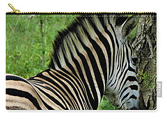 Zebra Walks Carry-all Pouch