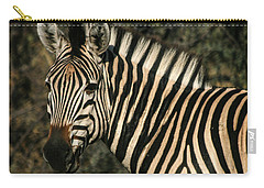 Zebra Watching Sq Carry-all Pouch
