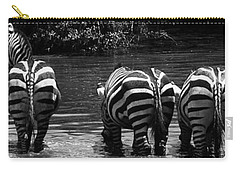 Zebras Cautiously Drinking Carry-all Pouch by Darcy Michaelchuk