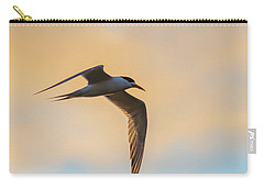Crested Tern In The Early Morning Light Carry-all Pouch