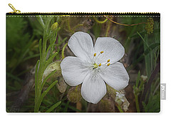 Carry-all Pouch featuring the photograph Sundew by Elaine Teague