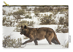 W4 Carry-all Pouch
