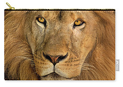 Carry-all Pouch featuring the photograph 656250006 African Lion Panthera Leo Wildlife Rescue by Dave Welling