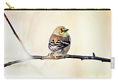Carry-all Pouch featuring the photograph American Goldfinch by Sue Collura