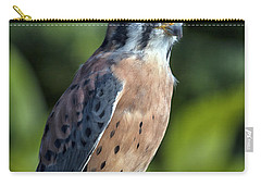 Carry-all Pouch featuring the photograph American Kestrel 9251501 by Rick Veldman