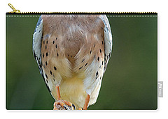 Carry-all Pouch featuring the photograph American Kestrel 9251502 by Rick Veldman