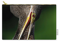 Anhinga Combing Feathers Carry-all Pouch