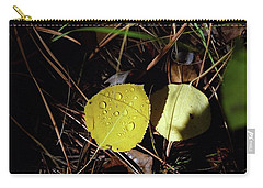 Aspen Dew Carry-all Pouch