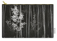 Aspens Northern New Mexico Carry-all Pouch