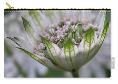 Astrantia Carry-all Pouch