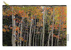 Carry-all Pouch featuring the photograph Autumn As The Seasons Change by James BO Insogna