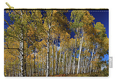 Carry-all Pouch featuring the photograph Autumn Blue Skies by James BO Insogna
