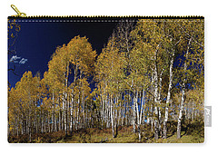 Carry-all Pouch featuring the photograph Autumn Walk In The Woods by James BO Insogna