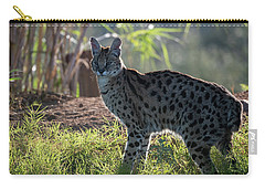 Backlit Serval Carry-all Pouch