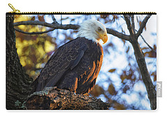 Carry-all Pouch featuring the photograph Bandit by Lori Coleman
