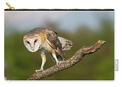 Carry-all Pouch featuring the photograph Barn Owl 5151801 by Rick Veldman