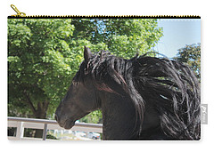 Beauty In Motion Carry-all Pouch