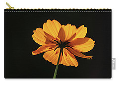 Carry-all Pouch featuring the photograph Behind Light And Shadow by Dale Kincaid