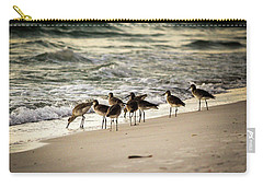 Carry-all Pouch featuring the photograph Birds On The Beach by Doug Camara