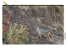 Carry-all Pouch featuring the photograph Black Backed Jackal by Alex Lapidus