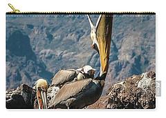 California Brown Pelicans In Ilsa Danzante Harbor Carry-all Pouch