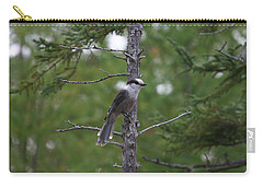 Carry-all Pouch featuring the photograph Canada Jay 101305 by Rick Veldman