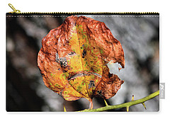 Carry-all Pouch featuring the photograph Carved Pumpkin Leaf At Gordon's Pond by Bill Swartwout Fine Art Photography
