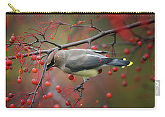 Carry-all Pouch featuring the photograph Cedar Waxwing 102206 by Rick Veldman
