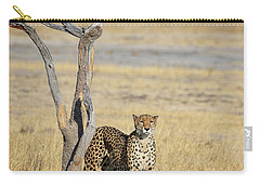 Carry-all Pouch featuring the photograph Cheetah by John Rodrigues