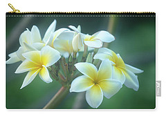 Cloudy Day Plumerias Carry-all Pouch