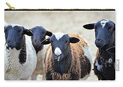 Curious Hair Sheep Carry-all Pouch