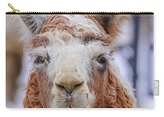 Cute Llama Carry-all Pouch